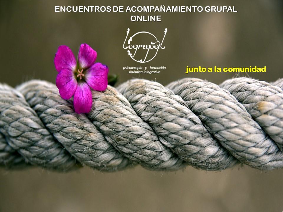 ENCUENTROS de ACOMPAÑAMIENTO GRUPAL online