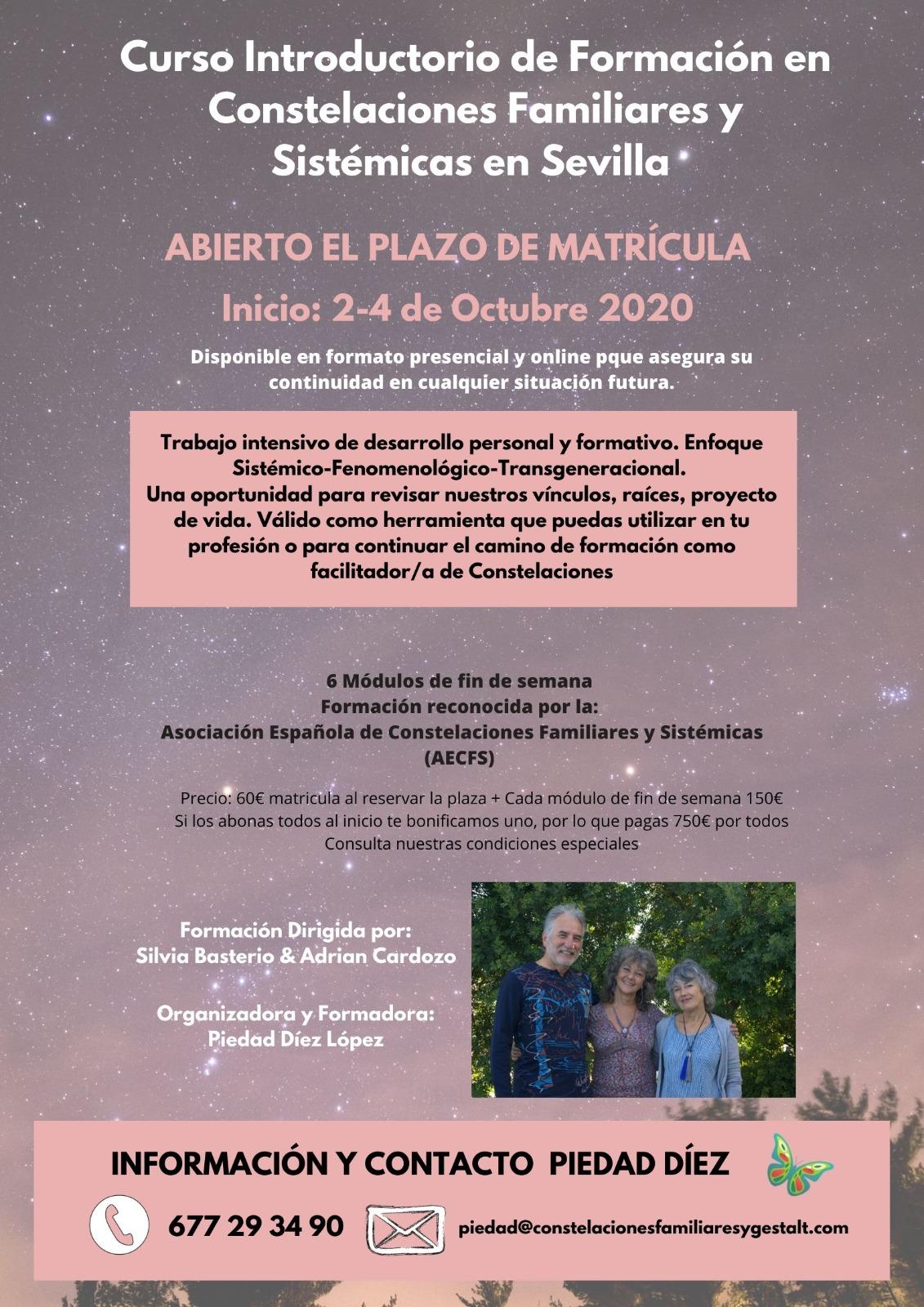 Curso introductorio de Formación en Constelaciones Familiares (Sevilla, matriculación abierta)