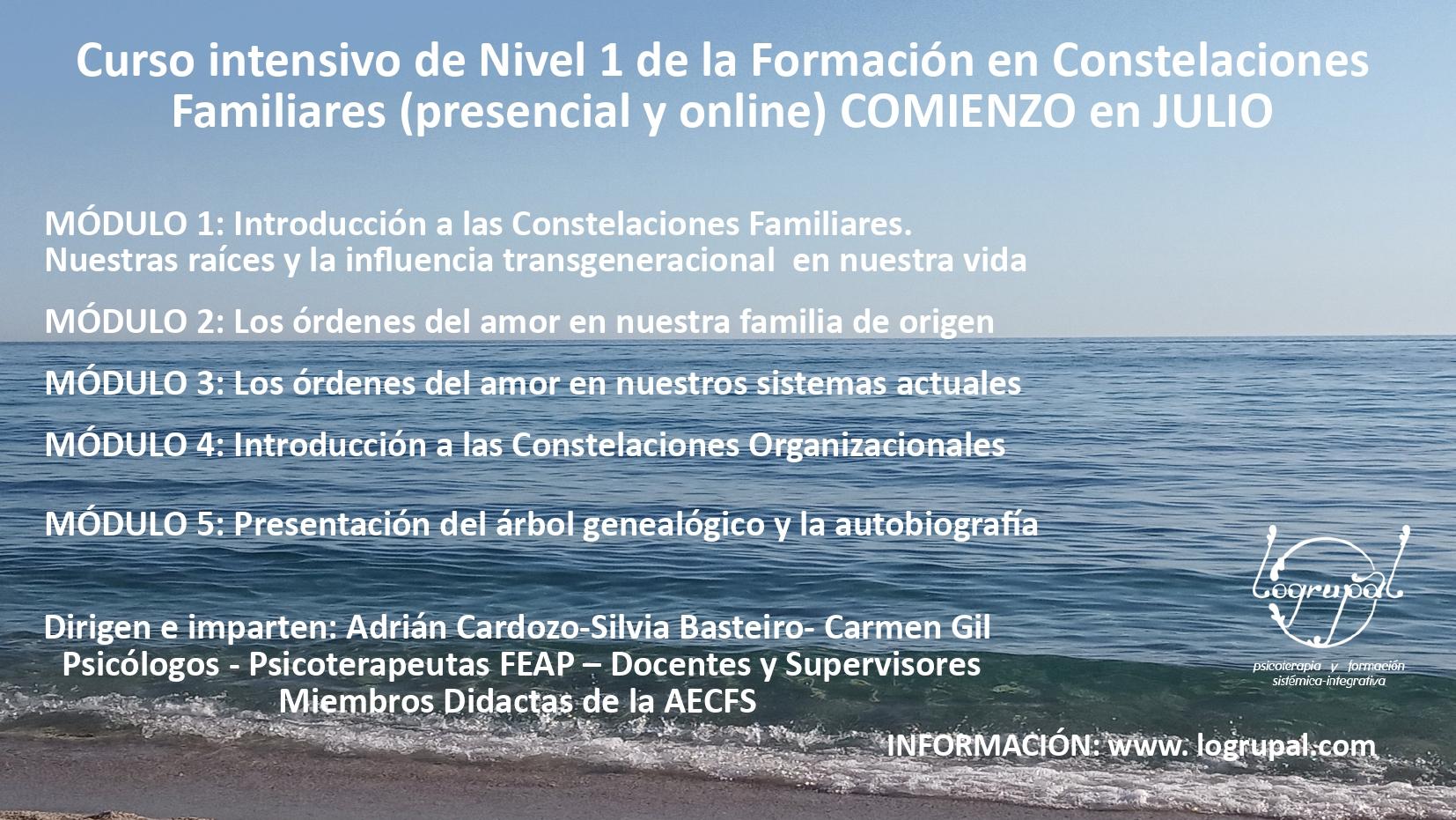 Curso intensivo del Nivel 1 de la Formación en Constelaciones Familiares (presencial y online)Inicio en julio